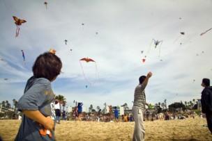 fest of kites